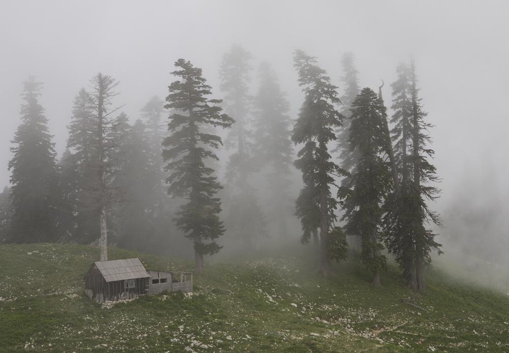 погода гагра абхазия на 30
